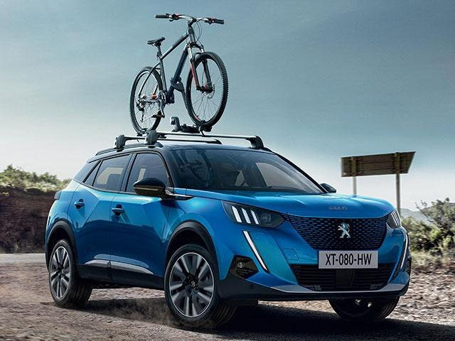 Peugeot Bike Rack