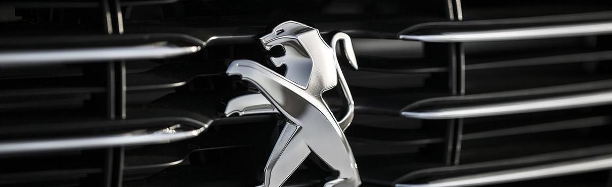 Peugeot logo grille