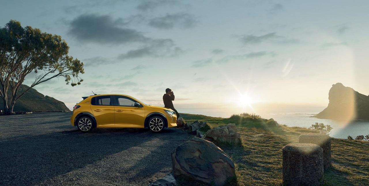 New Yellow 208 Landscape