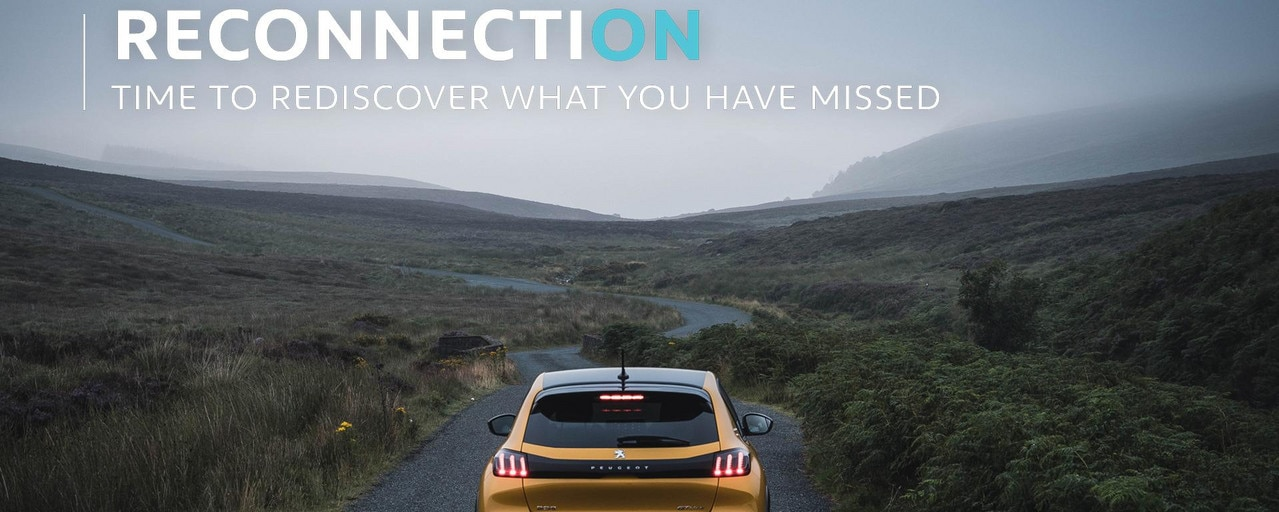 Reconnection Series - Co. Wicklow - Cover - Peugeot 208